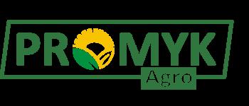 logo_promyk2019
